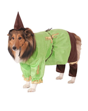 Fato de Espantalho do Feiticeiro de Oz para cão