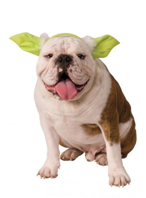 Orejas de Yoda Star Wars para perro