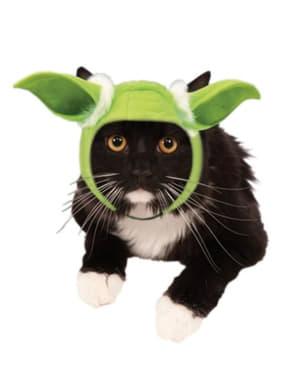 Orelhas de Yoda Star Wars para gato