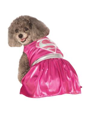 Supergirl Kostyme Hund