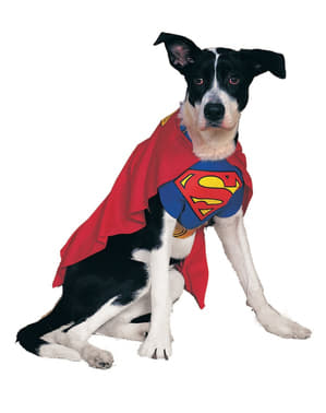 Superman Hundekostyme