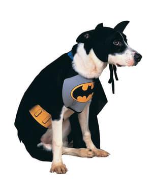Batman jakke til hunde