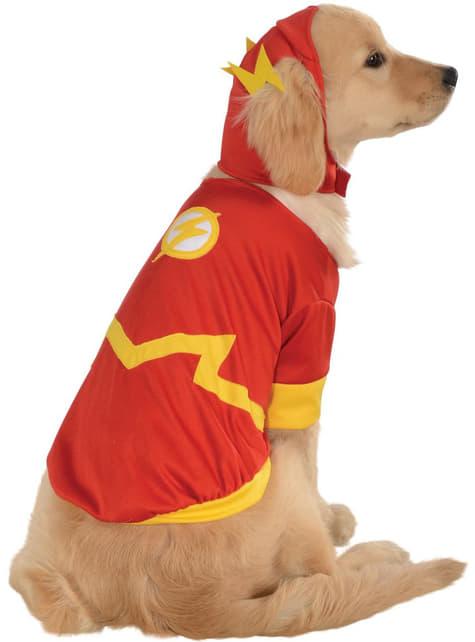 Fato de Flash DC Comics para cão