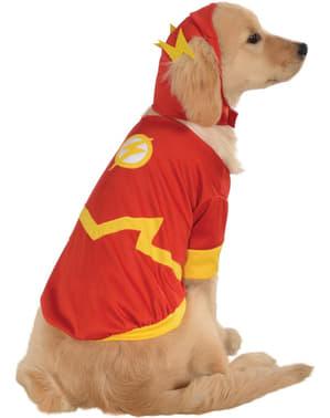 Costum Flash DC Comics pentru cățel