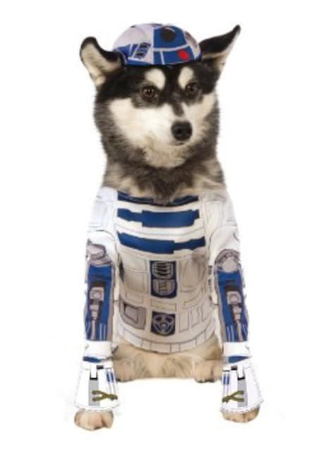 Fato de R2D2 para cão