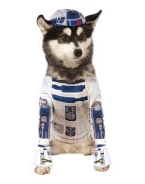 Disfraz de R2D2 para perro