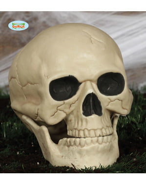 Decorative Skull (20 cm)