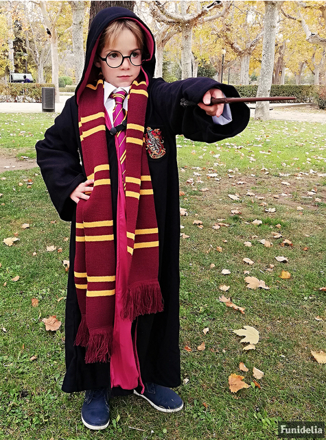 Cravatta Harry Potter
