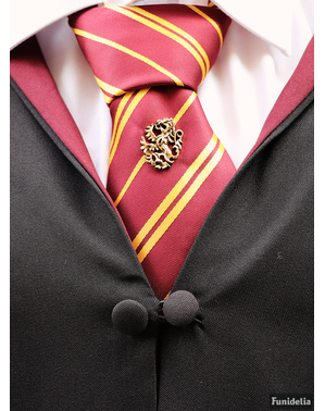 Corbata de Harry Potter y pin Gryffindor