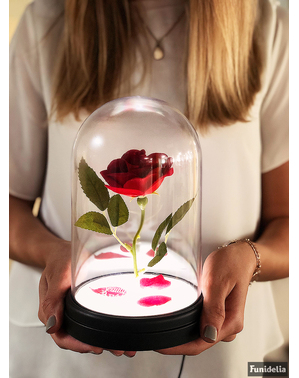Enchanted Rose - Figur Beauty and the Beast dalam etalase yang menyala