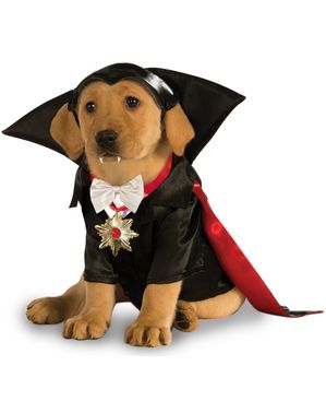 Koirien Dracula Universal Studios Hirviöt -asu