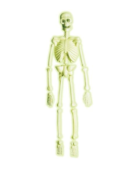 Esqueleto de laboratorio 3D fosforescente