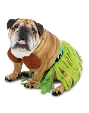 Disfraz de hawaiana para perro