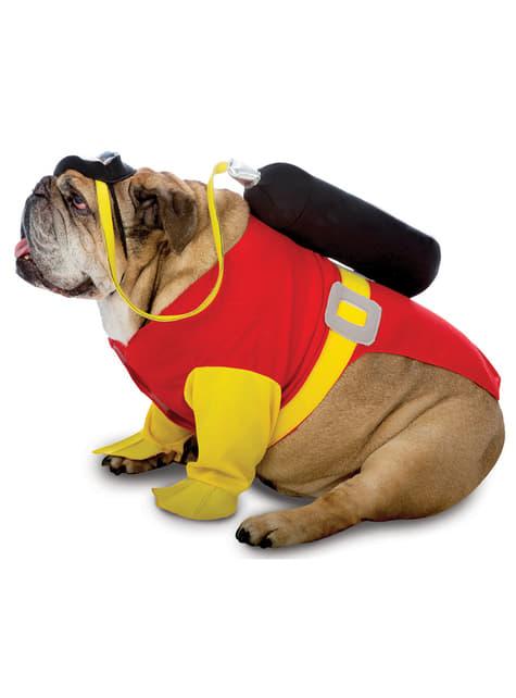 Fato de mergulhador para cão