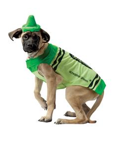 Disfraz de crayola verde para perro