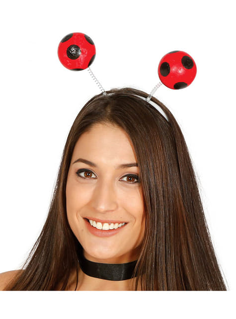 Antennes coccinelle adulte