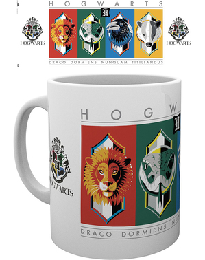Taza Casas Hogwarts - Harry Potter