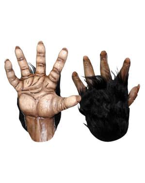 Šimpanzí ruce hnědé