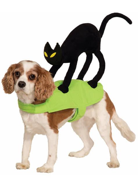Déguisement Chat sur le dos chien