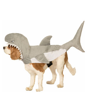 डॉग का शार्क कॉस्टयूम