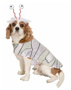 Disfraz de momia para perro