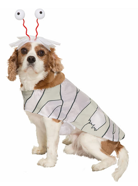 犬のミイラコスチューム