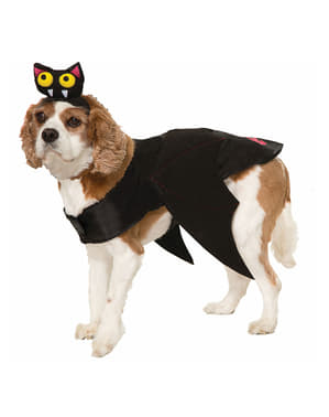 Fato de morcego para cão