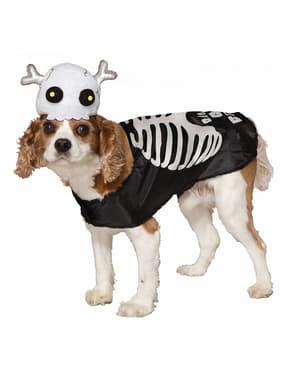 Csontváz jelmez kutyáknak