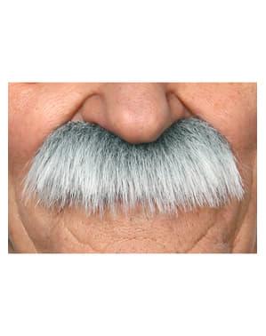 Mustasch Einstein för vuxen