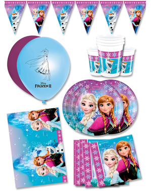 Premium Frozen Birthday Decorations for 16 People - Northern Lights