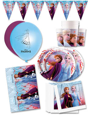 Premium Frozen Birthday Decorations for 16 People