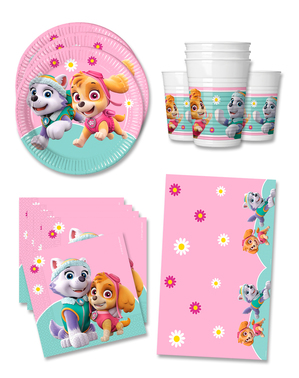 Paw Patrol Birthday Decorations for 16 People - Skye & Everest