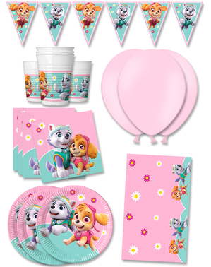 Premium Paw Patrol Birthday Decorations for 16 People - Skye & Everest