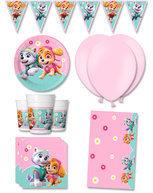 Premium Paw Patrol Birthday Decorations for 8 People - Skye & Everest