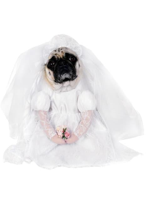 Fato de noiva para cão