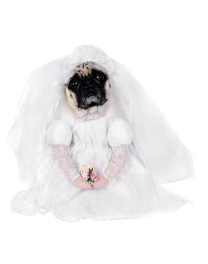 Déguisement de mariée pour chien