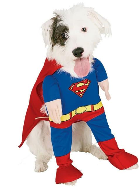 Costum Superman pentru cățel