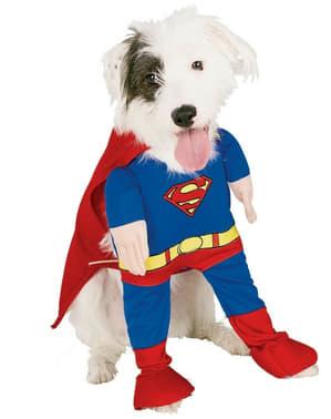 スーパーマンドッグコスチューム