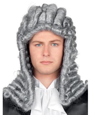 Peruca cinzenta de juiz para homem