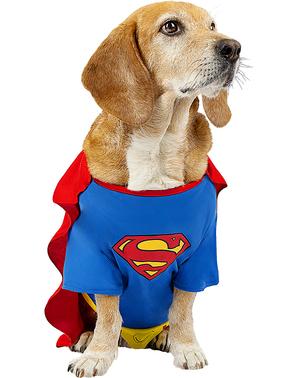 Superman Kostyme til Hunder