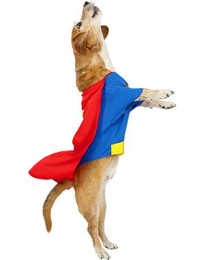 Costum Superman pentru câine