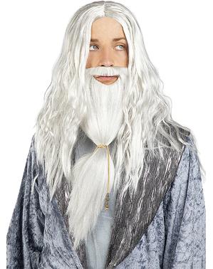 Perkamentus pruik en baard - Harry Potter