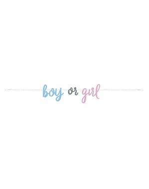 """""""Boy or Girl"""" Gender Reveal Banner - Blue or Pink"""