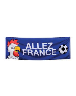 Cartel de Francia fútbol