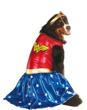 犬用プラスサイズワンダーウーマンコスチューム