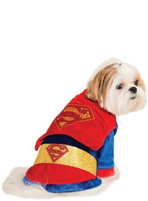 Costume brillant Superman chien