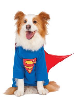 犬用プラスサイズスーパーマンコスチューム