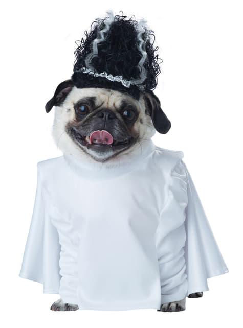 Fato de noiva de frankencão para cão