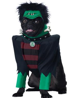 Disfraz de Frankenstein para perro