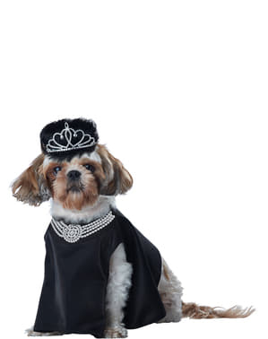 Costume da diva di Hollywood per cane